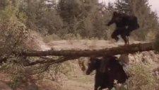 Maskeli Kahraman Zorro Film Fragmanı (1998)