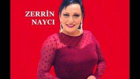 Zerrin Nayci - Boş Kalan Çerçeve
