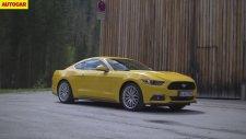 2015 Model Ford Mustang V8