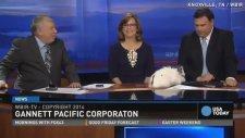 Canlı Yayında Çiftleşen Paskalya Tavşanları