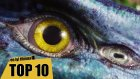 En İyi Bilim Kurgu Filmleri Top 10