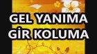 Gel Yanıma Gir Koluma Halay Re Minör Kürdi Karaoke Md Altyapısı Şarkı Sözü