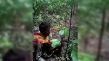 Arakanlı Müslümanlar Açlıktan Ağaç Yaprağı Yiyor