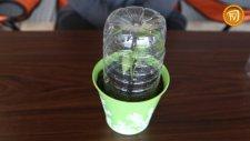 Pet Şişeden Sera Yapımı
