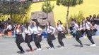 Filiz Rıfat Güpgüpoğlu ÇPAL/ Penguen Dansı