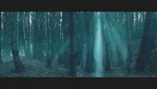 Arwen, Aragorn'un Ölümü