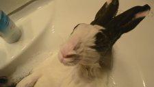Bunny takes a shower (Musluk Banyosu)