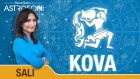 KOVA burcu günlük yorumu bugün 2 Haziran 2015