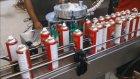 Aktivatör Tepe Çakma Makinesi 1 - Aerosol Actuator Machıne -