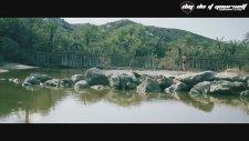 DJ Sava feat. Hevito - Bailando