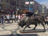 Kadıköy Boğasının Deli Aras İle İmtihanı