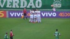 Brezilya'da kaleciyi çaresiz bırakan enfes gol