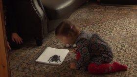 Gerçeğinden Daha Gerçek 3 Boyutlu Örümcek Çizimi