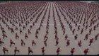 36 Bin Kung Fu Öğrencisi ile Çekilen Dünyanın En Yüksek Nüfuslu Klibi