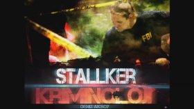 Stallker - Kriminoloji