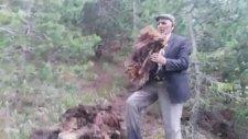Orman Köylülerinin Tarım Destekleme Hırsızlığı