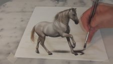 3 Boyutlu İnanılmaz Gerçekçi At Çizimi