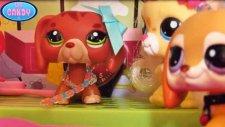 LPS Pati Kuzenlerine Karşı - LPS Candy TV Miniş Videoları