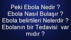 Ebola Nedir ? Nasıl bulaşır ? Tedavisi Var mıdır ? Belirtileri Nelerdir ? Ebola Hakkında Herşey