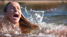 Yeryüzündeki En Acımasız 10 Katil Su Canlısı