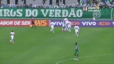 Josef De Souza'nın Kaleciyi Çaresiz Bırakan Enfes Golü