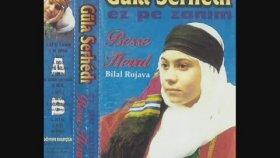 Gula Serhede -Diyarbekir