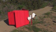 Kırmızı Kulübesiyle Uçan Snoopy Temalı Drone