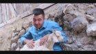 Bolulu Hakkı Ergin(Bhh) Burcu Burcu 1920   1080 P 2015  Ankara Oyun Havası