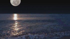 Muzaffer Akgün - Geceler Yarim Oldu
