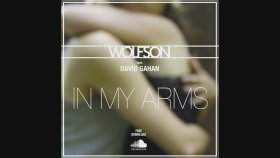Wolfson feat. Dave Gahan - In My Arms (Free Download)