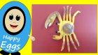 Sürpriz Yumurtalar | Hayvanları Öğreniyorum | Deniz Canlıları - 2