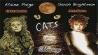 MEMORY Müziği CATS Müzikal Oyunu Ünlü Jenerik Şarkı Piyano Solo Dinleti Kediler Tiyatro Oyun Piyes