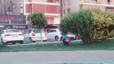 Kordon'da Çimenlik Alana Sıçan Suriyeli