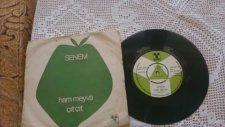 Senem-Ham Meyvayı Kopardılar Dalından (1976)