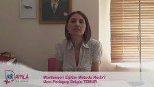 Montessori Eğitim Metodu Nedir?