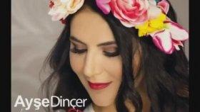Ayşe Dinçer - Dandini Dastana