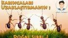 Karıncaları KOVMA Yöntemi -Doğal Yöntem -