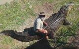 Timsahla Rodeo Yapan Çılgın Amcamız
