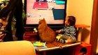 Bebeğin ve Kedinin Tam Konsantre Televizyonu İzlemesi