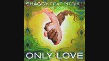 Shaggy ft. Pitbull, Gene Noble - Only Love