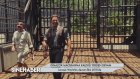 SINEHABER BOLUM 1 SINEMA TV_FİLTV