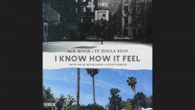 Ace Hood - I Know How It Feel ft. TY Dollar $ign