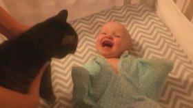 Kedi Görünce Çılgına Dönen Bebek