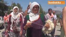 Beşkaza Yaylaları Yörük Türkmen Kültür Şenliği