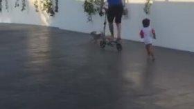 Çocuğunun Oyuncağına Binip Evladını Arkasından Koşturan Vicdansız Messi