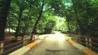 Ayvat Bendi Tabiat Parkı Tanıtım Filmi