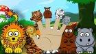 Sevimli Hayvanlar Finger Family Şarkısı