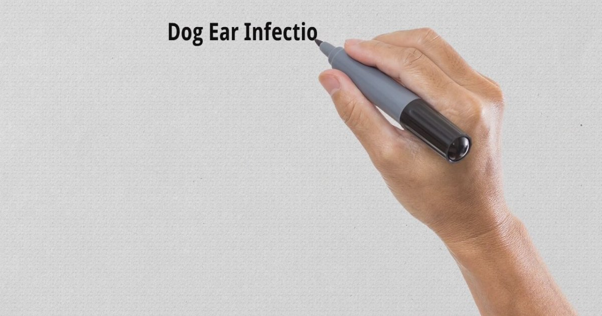 Rulide Tablets For Ear Infection