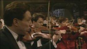 Bach - Erbarme Dich