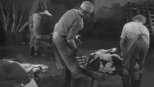 Fransız Mezbahaneleri (1946)